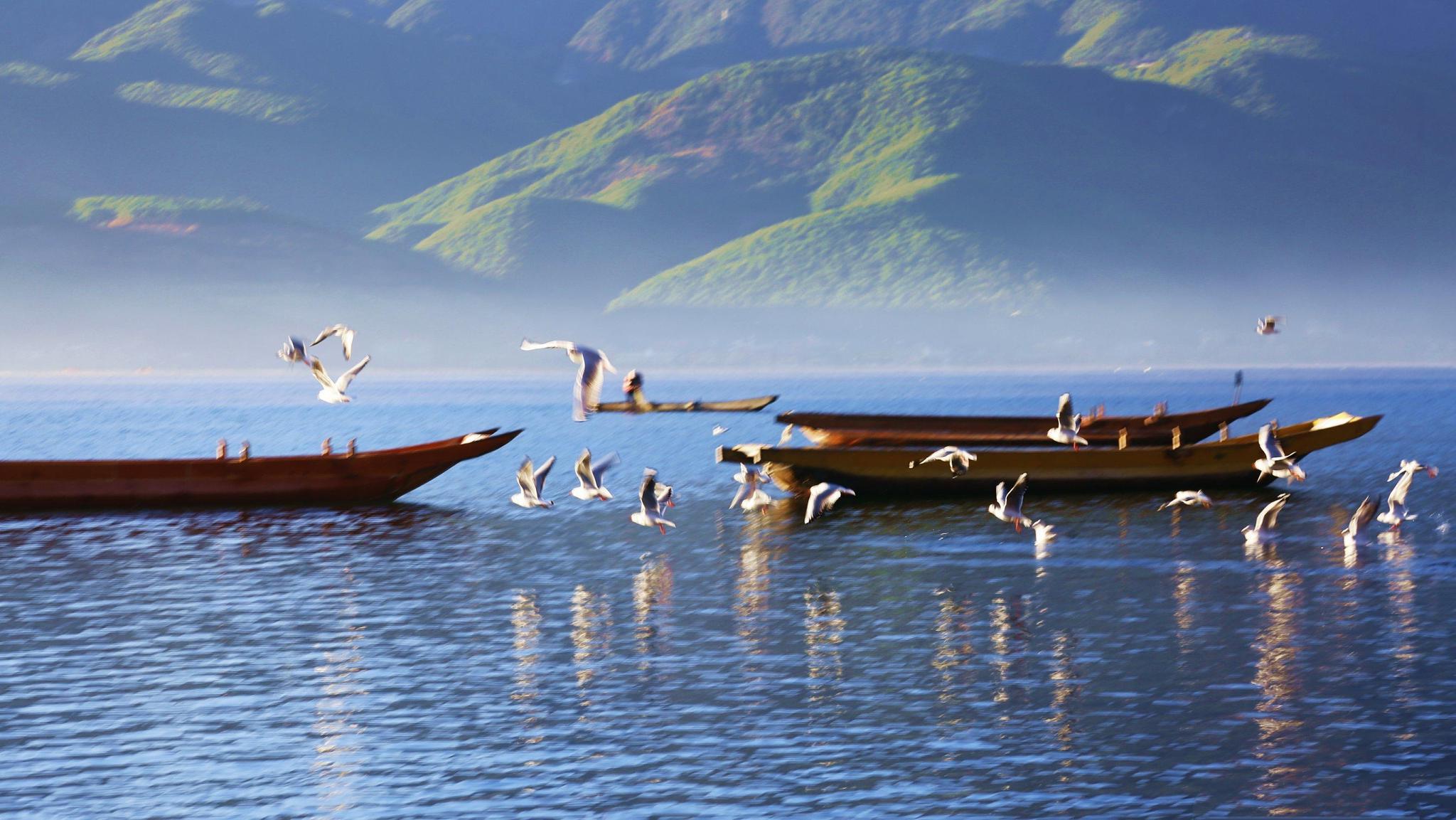 泸沽湖,一步一美景,去过了心就不曾离开。