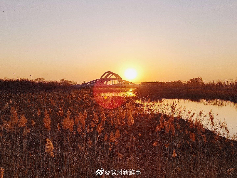 高新区蒲河,最美的落日!