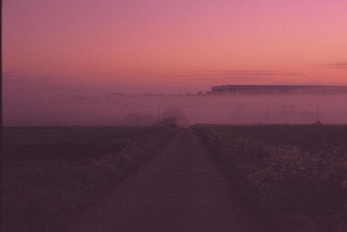 粉色暮光消融于蒙蒙雾霭之间。ins:robtstanier