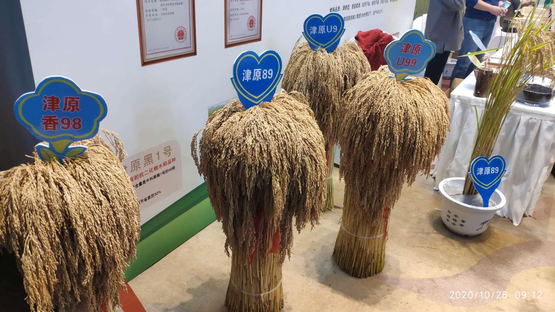 我市举办2020年天津小站稻品牌推介会