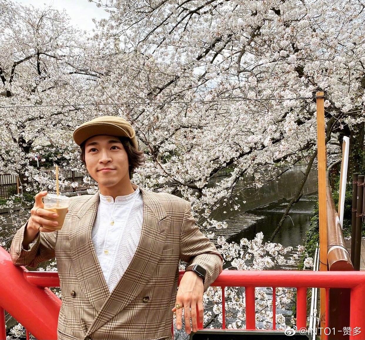 赞多晒出一年前的樱花树下游客照……