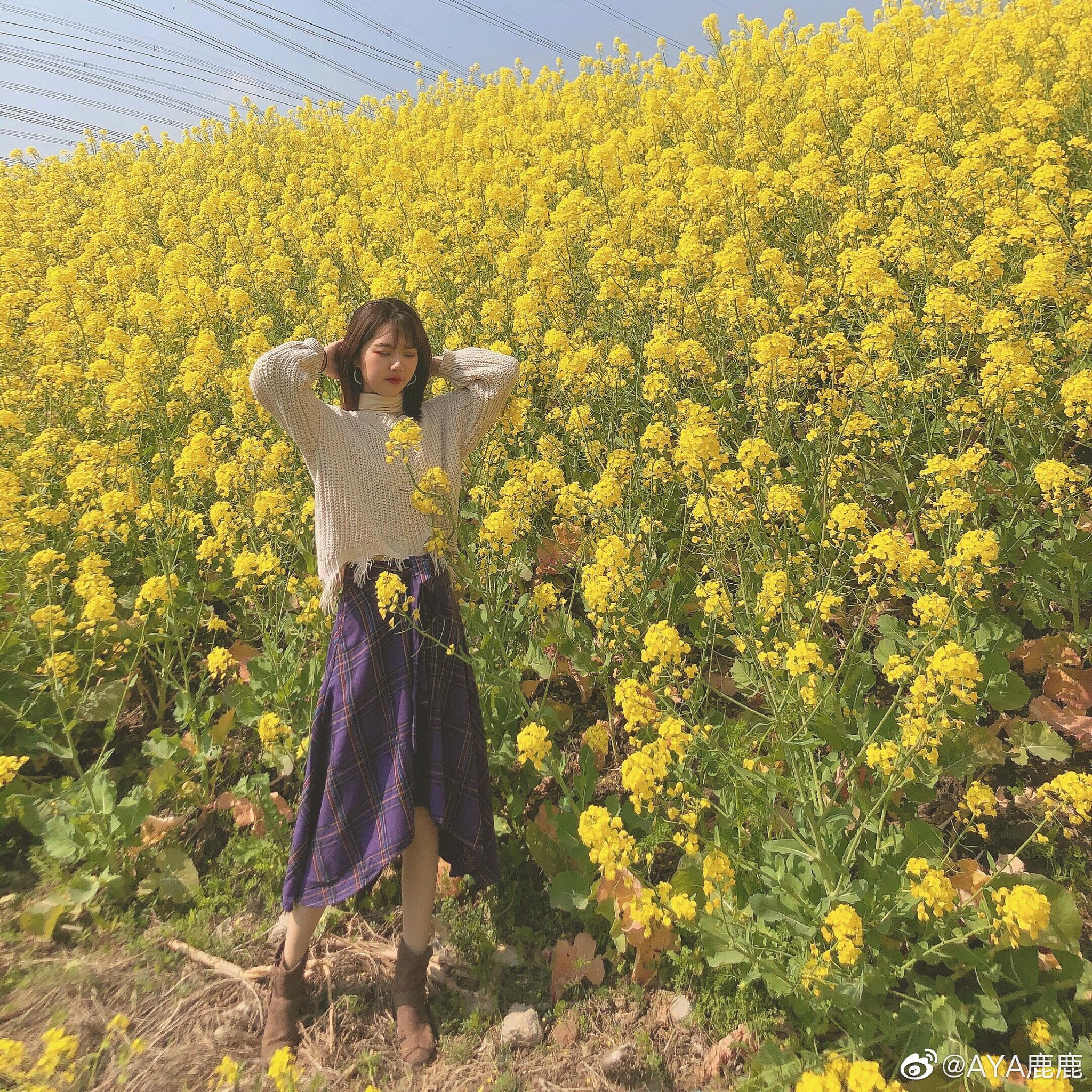 春天真的来啦!家旁边有好多大片的油菜花🌼超美!