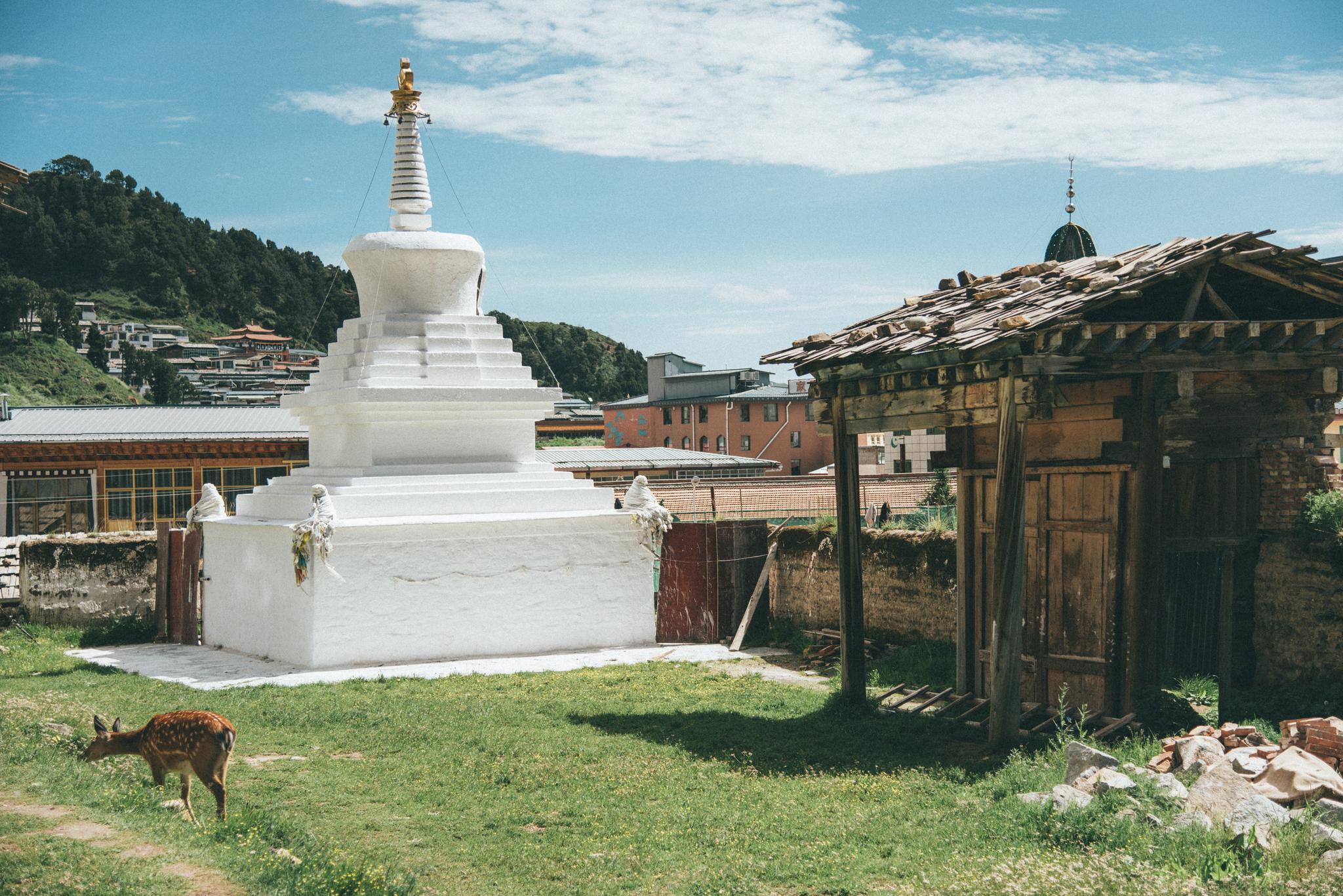 四川郎木寺,郎木寺镇一部分在四川,一部分在甘肃