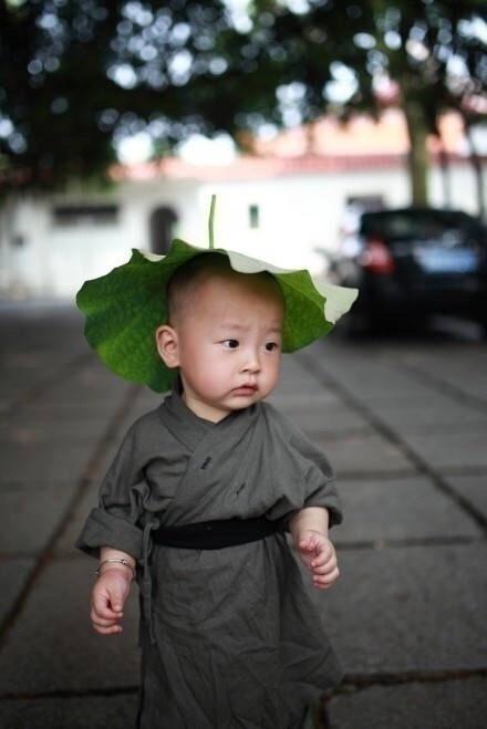 现实版乌龙院,福州西禅寺超可爱小和尚,萌一脸!