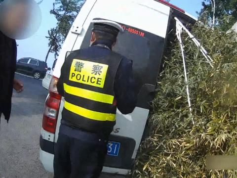 """面包车露""""竹子尾巴"""",公安交警:不知道的以为你家养熊猫呢"""