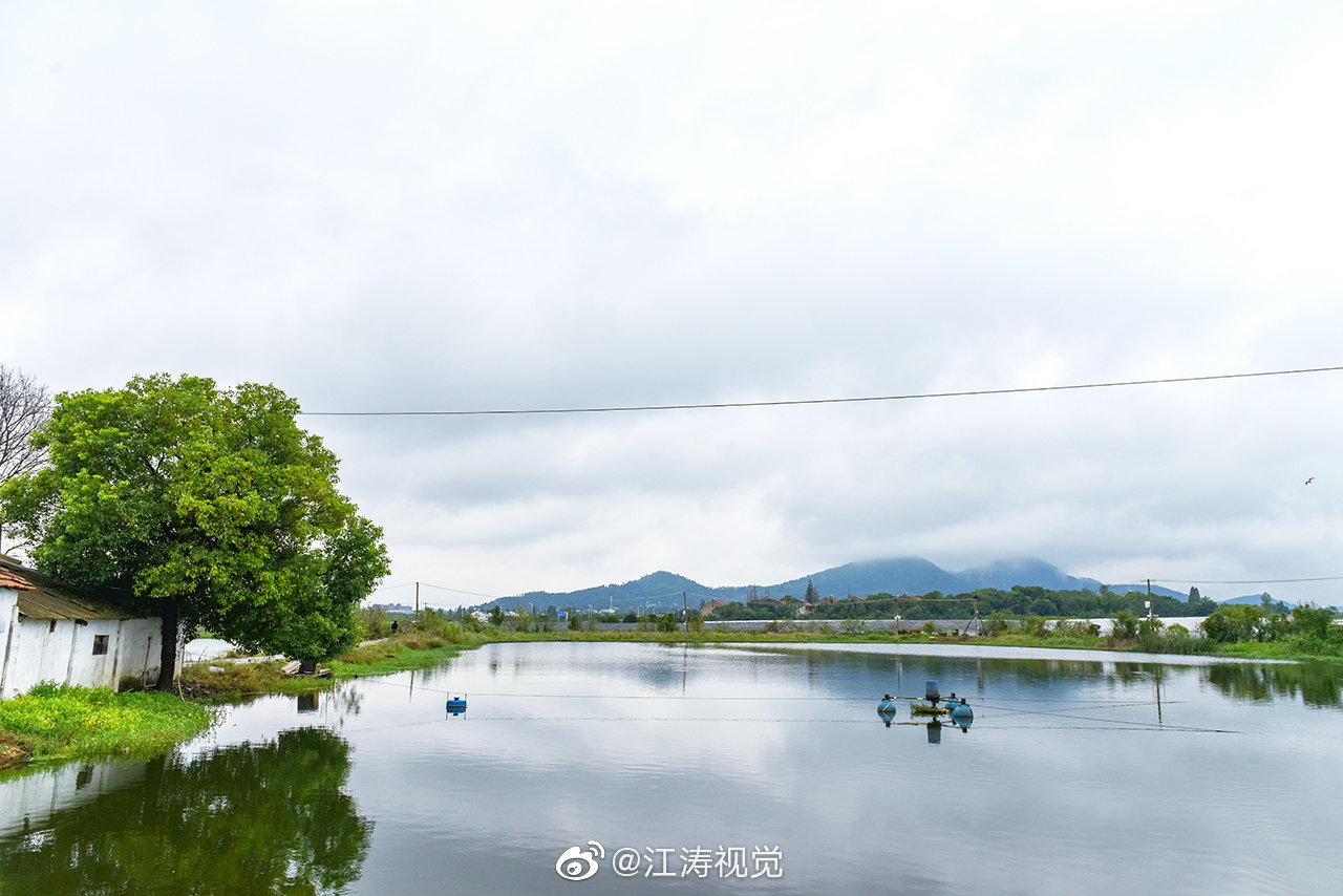 这是举办武汉乡村振兴大讲堂第三季第三场活动的蔡甸玉贤街松林村