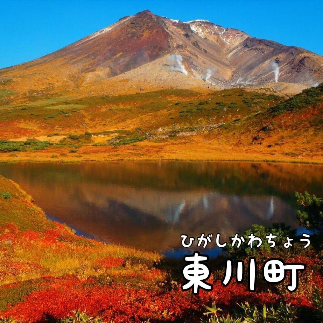 東川町各景色小店攻略,来游学,留学或者旅行时一家家走起吧