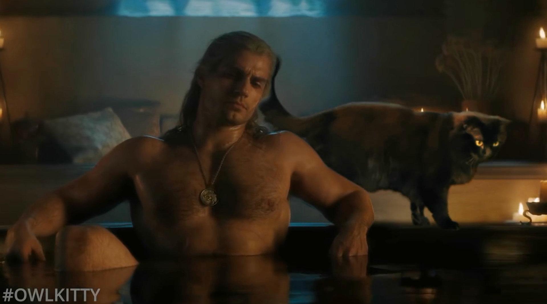 哈哈哈~~如果猎魔人利维亚的杰洛特身边有一只喵……