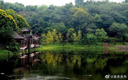 华岩寺&华岩旅游风景区,开了