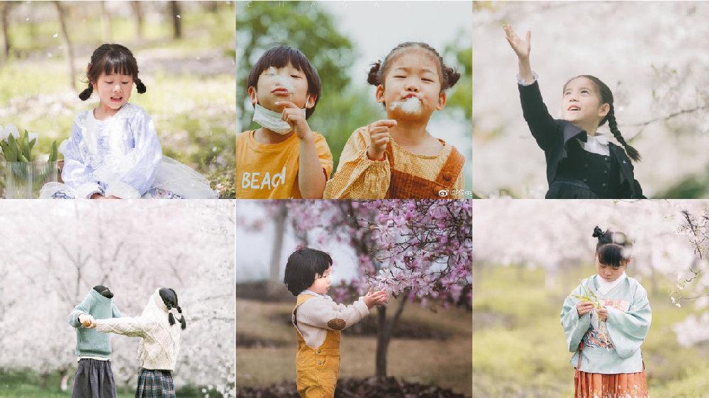 赏花是这个春天的头等大事|花季学员作品集锦