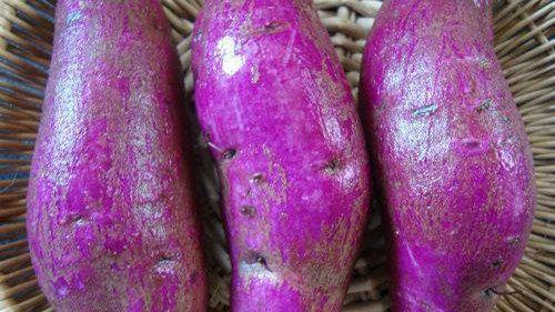 水果玉米、紫薯是转基因食品吗?会不会产生隐患?注意查看标识