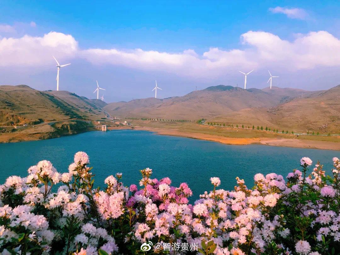 今日天气放晴,贵州乌蒙大草原景区迎来了难得一见的云海佛光奇观