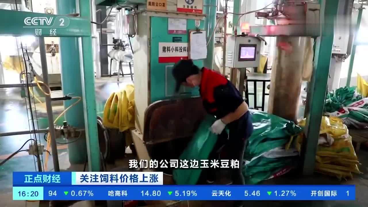 饲料价格三个月涨3次,有养殖户一头猪饲料成本涨300余元