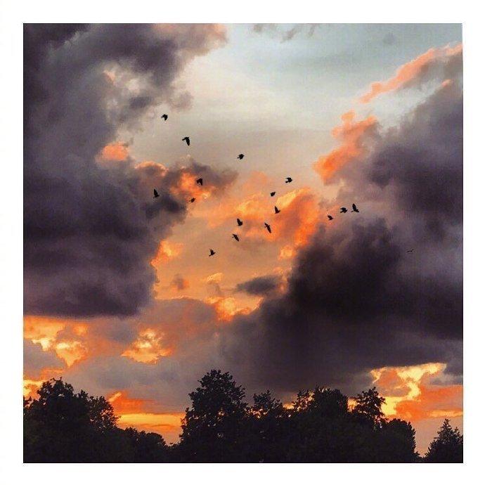爱的开始是一个眼色,爱的最后是无尽的苍穹。――林清玄