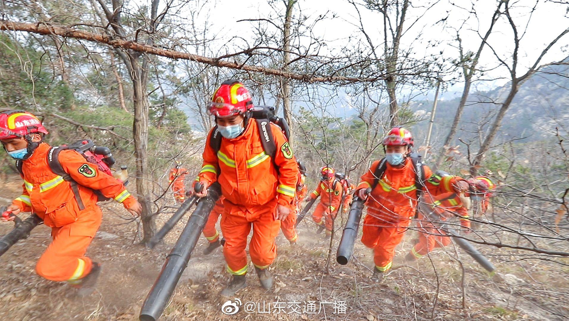 山东举行森林火灾扑救实战拉动演练