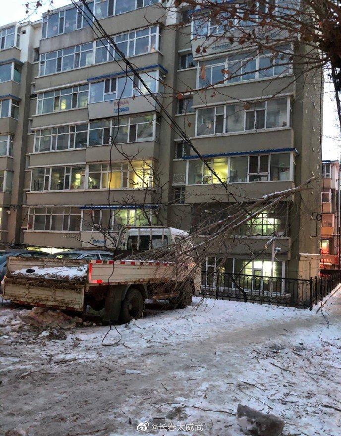转自网友:长庆街义和路小胡同,掉落的树枝砸到电线上