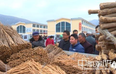 """岷县产业""""遍地"""":农户从""""日子不称心""""到致富达人"""