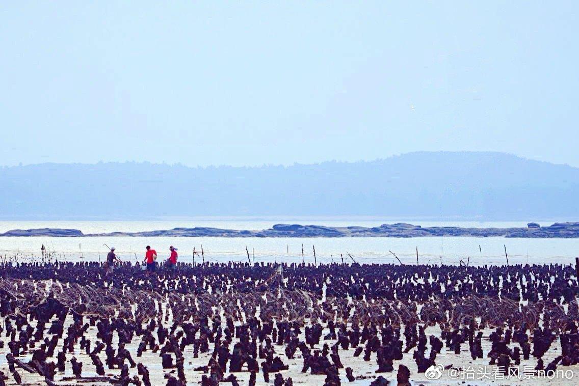 金门建功屿,一座孤悬在金门浯江溪口的潮汐小岛,潮涨潮落