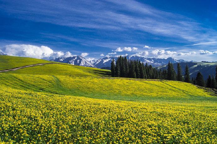 新疆   鲜为人知的净土仙境,塔里木吉尔格郎。
