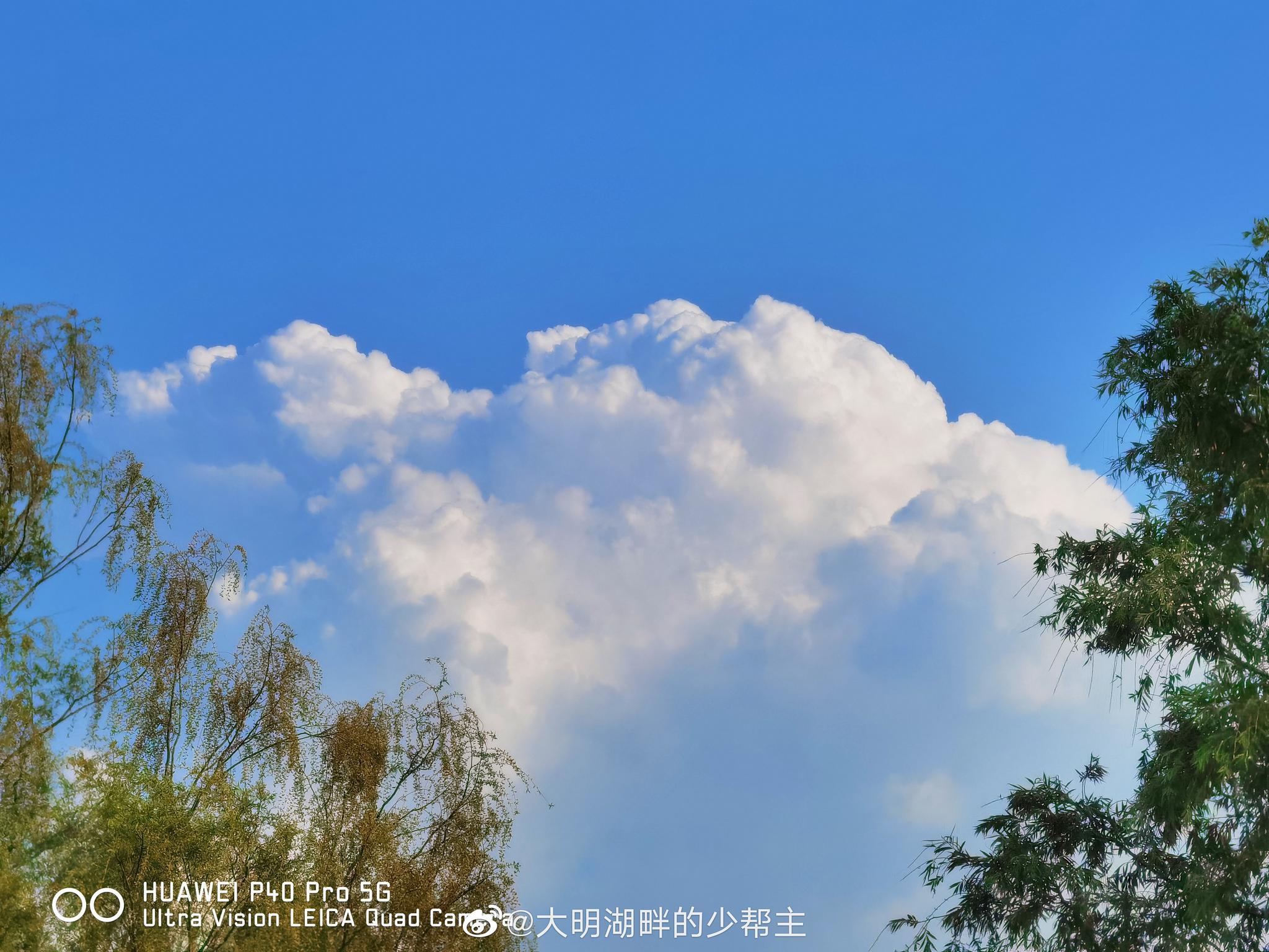 今日份大明湖送你一份棉花糖近日济南迎来好天气大明湖的蓝天白云
