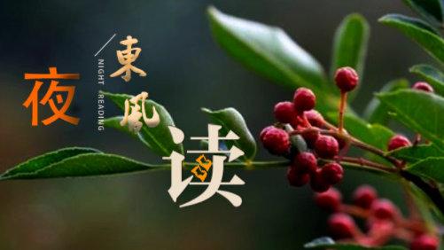 【夜读 · 散文】花椒树下