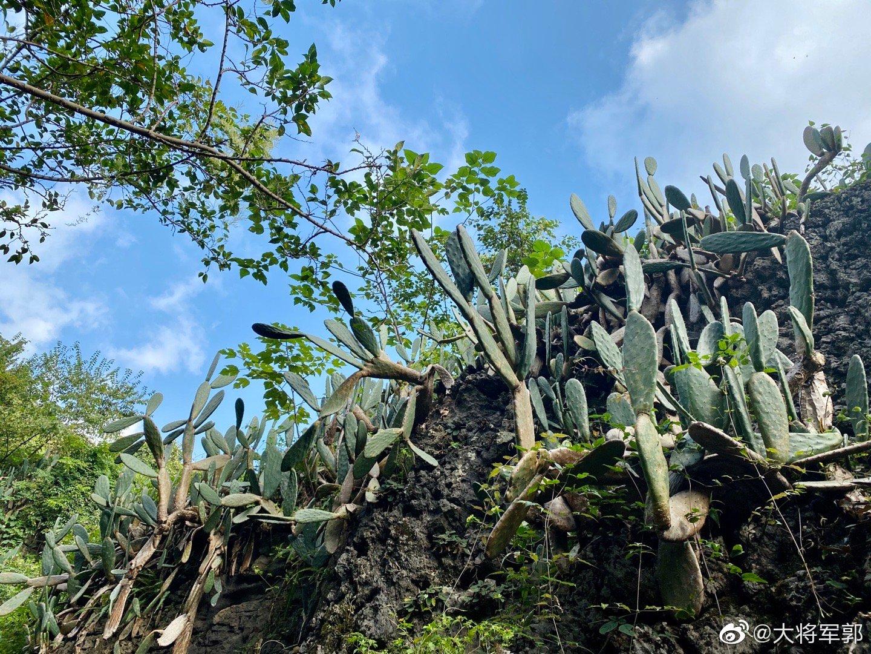单方面宣布,酒仙桥金敏喜成功打卡黄果树瀑布