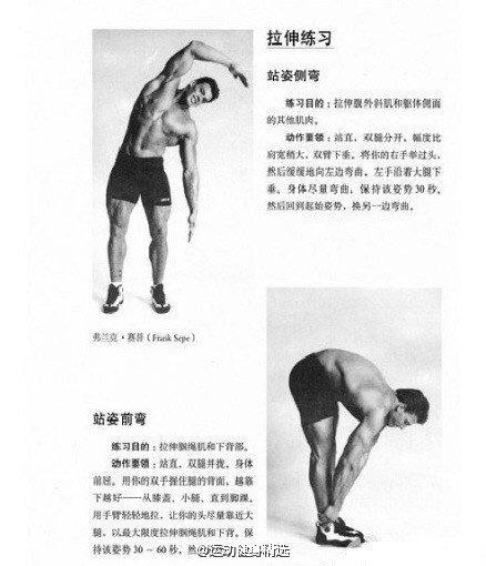 10分钟学会拉伸,防止运动后浑身疼,跑步后小腿长肌肉块