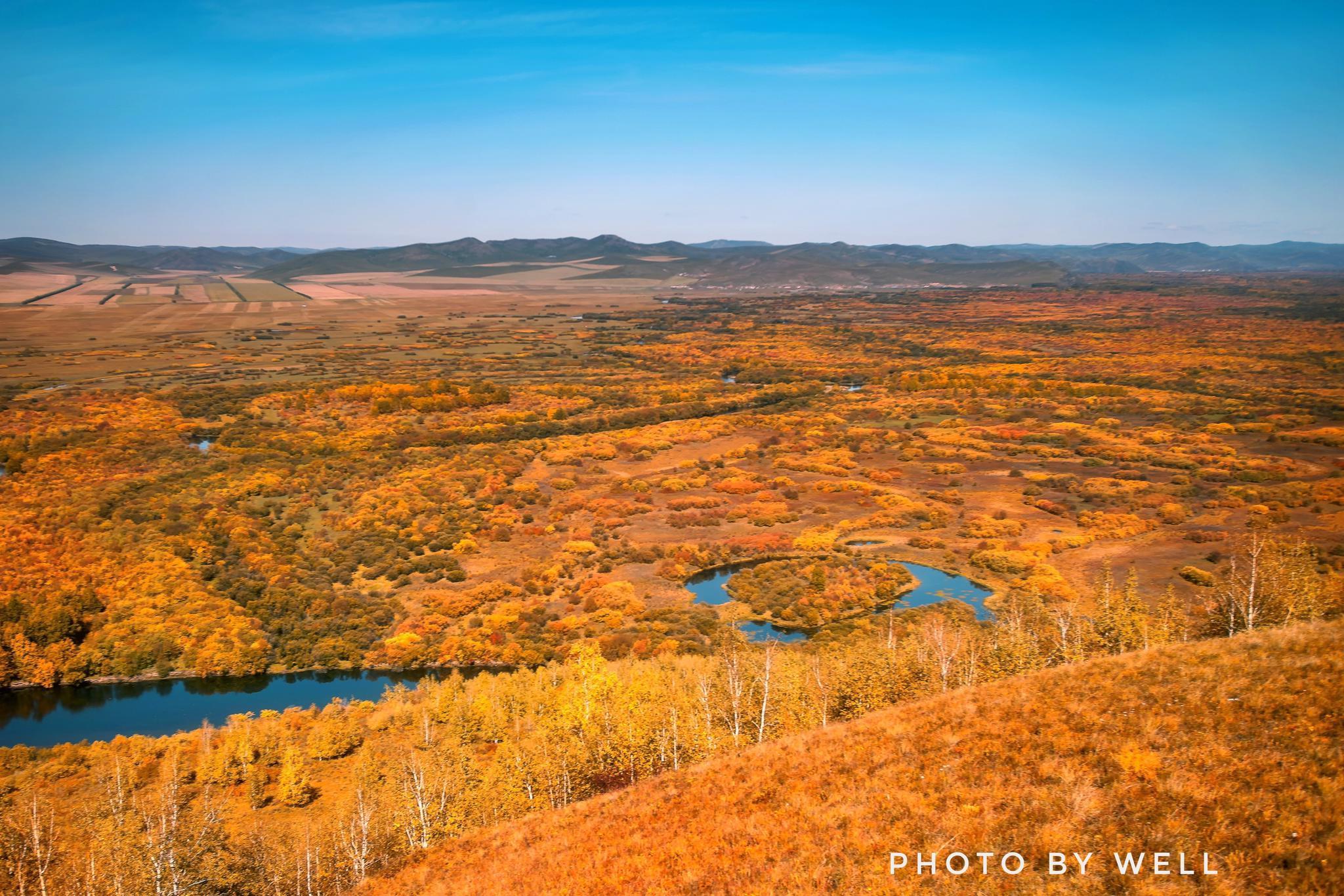 额尔古纳湿地秋色——油画般的草原、森林、河流,金秋时节