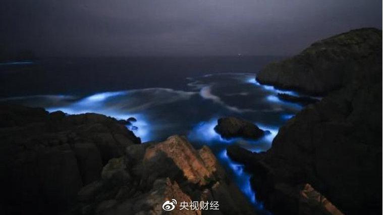 惊艳!象山渔山岛出现蓝眼泪奇观
