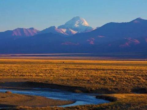 西藏自治区人民政府关于印发区招商引资优惠政策若干规定的通知