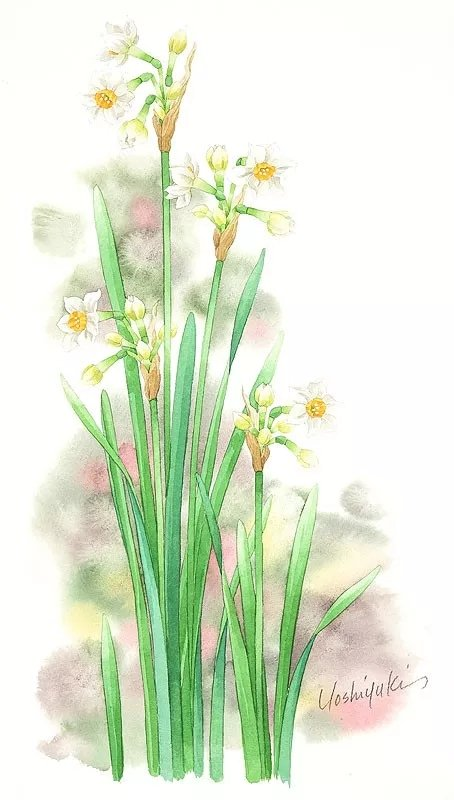 日本水彩画家茨木祥之