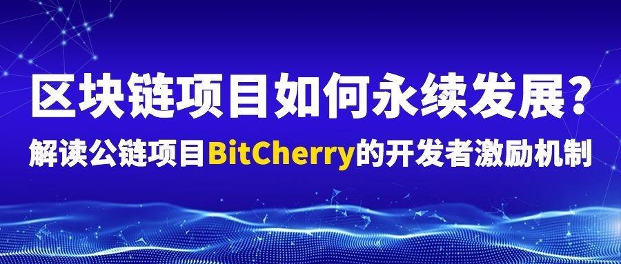区块链项目如何永续发展解读公链项目BitCherry的开发者激励机制