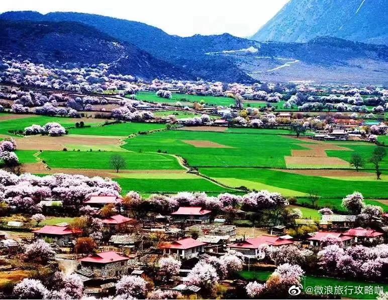 人生应该有个不一样的旅行,一生一次318国道川藏线