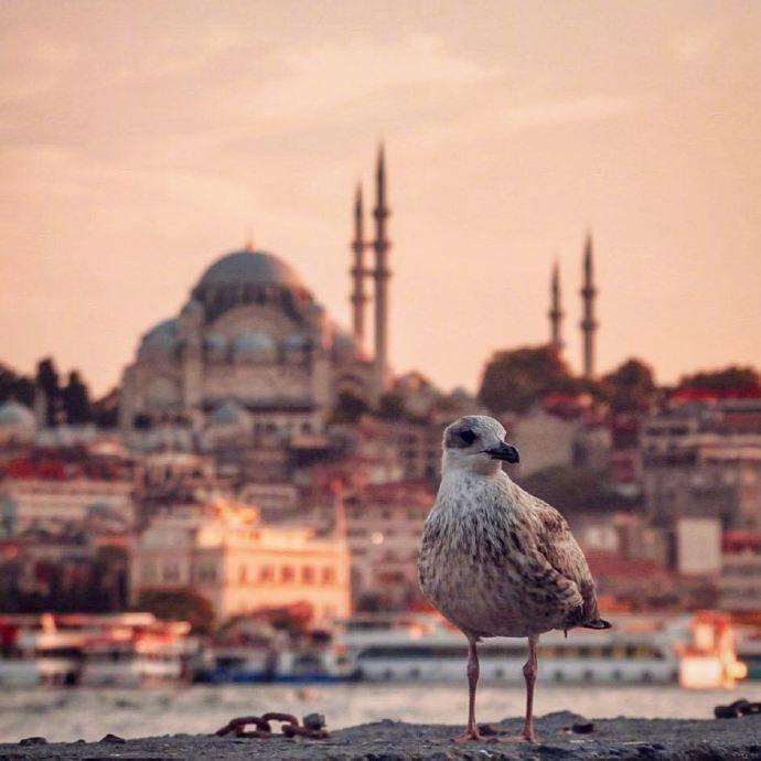 伊斯坦布尔的黄昏总有它描绘不完的美景