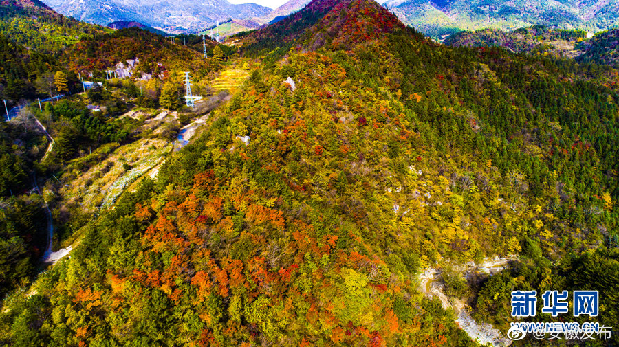 位于大别山腹地的岳西县石关乡秋色烂漫,层林尽染