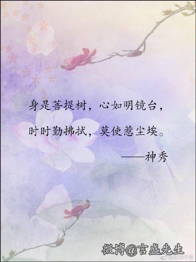 九首最美禅诗,让你浮躁的心静下来。