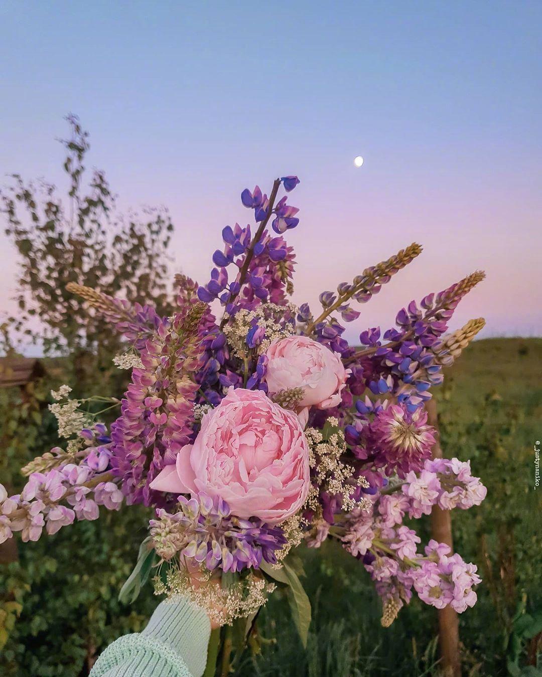 爱别人适可而止,但是爱自己一定要尽心尽力。