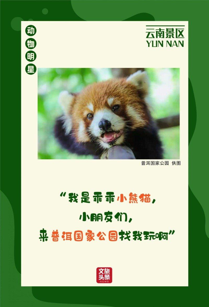 喜迎COP15大会!景区里的动植物明星海报等您欣赏
