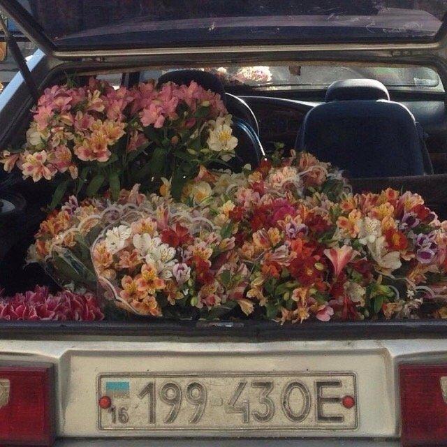 花儿那么美~