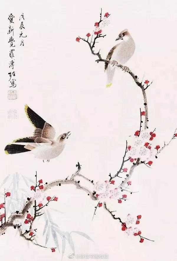 溥佐笔下干净典雅的梅花小鸟