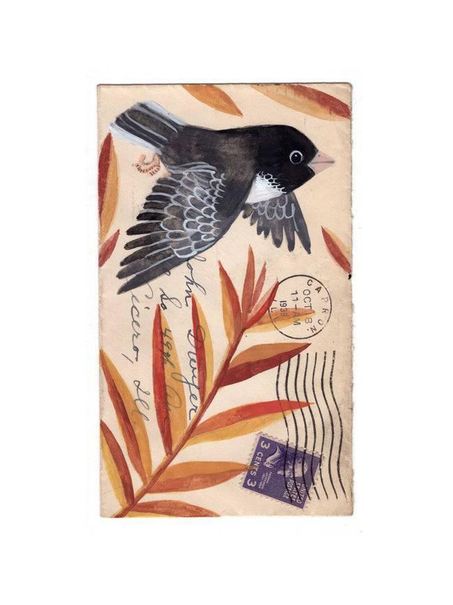 画在老明信片上的动植物美国插画家 Diana Sudyka