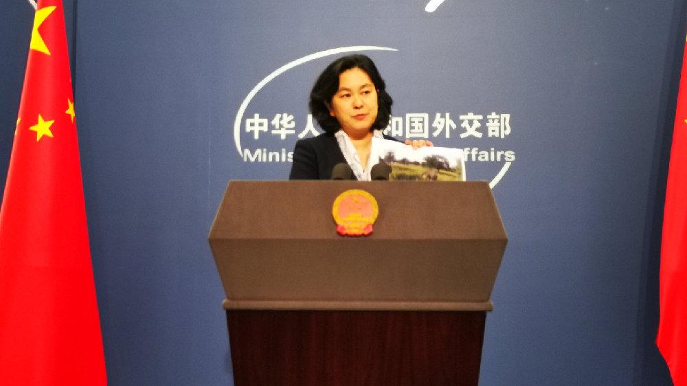 华春莹把照片和调查报告都打印出来带上了   北京观察