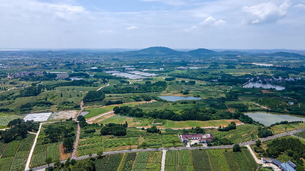 南京高淳藏着一个美丽乡村,历史悠久景色优美,宛如世外桃源