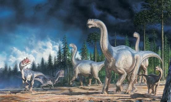 克隆一只恐龙,到底比克隆绵羊难在哪里?科学家迟迟不动手