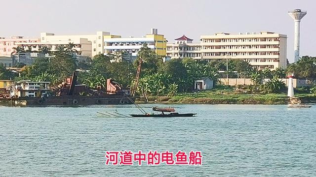"""非法捕捞排行榜出炉,""""电鱼""""成吐槽热点!广东投诉量全国第一"""