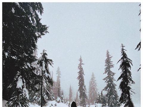 钟丽缇女儿晒雪地行走照片,穿滑雪服一头长发温柔美丽