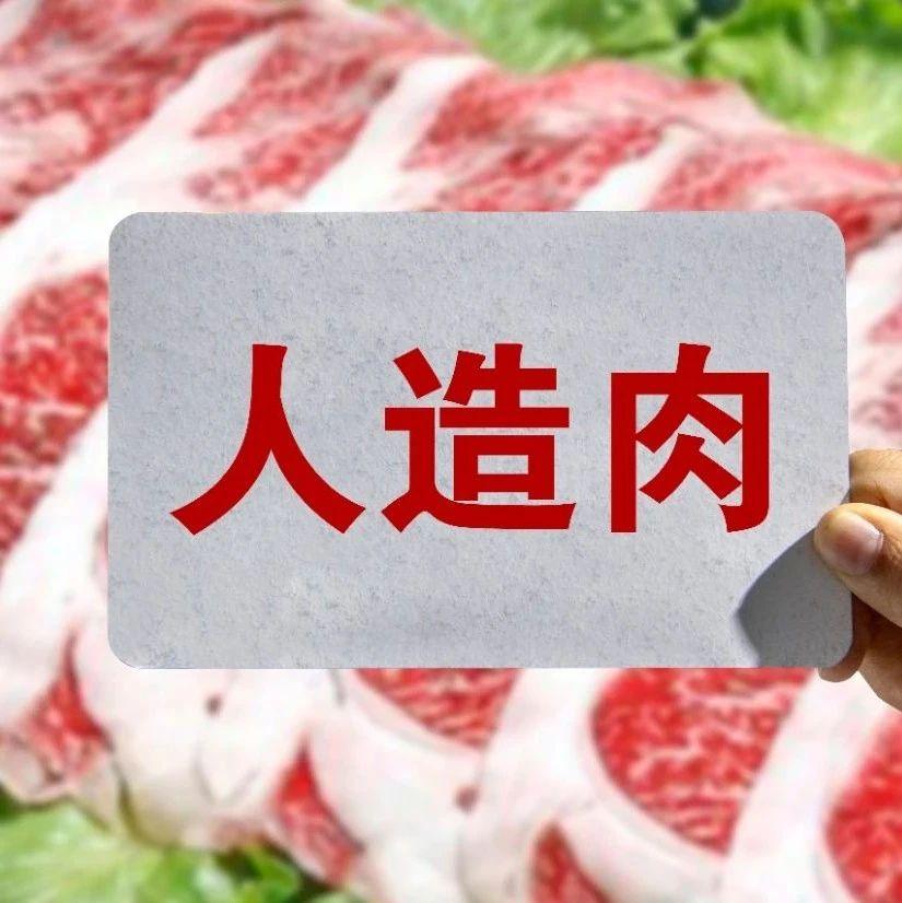 推动人造肉进入大众餐桌,「星期零STARFIELD」获经纬中国、愉悦资本数千万融资|早起看早期