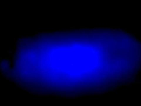 技术突破!研究者使用不稳定的钙钛矿制造出蓝光LED