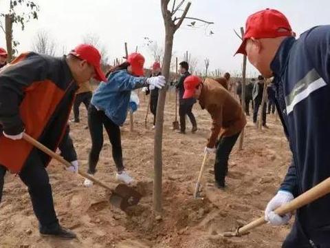 国网临漳县供电公司:植树造林 云端点绿