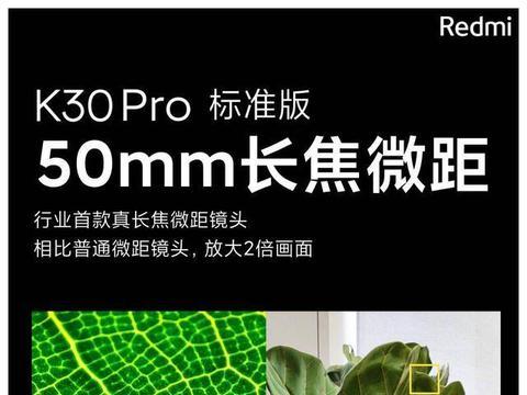 红米K30 Pro 非官方微距样张曝光,这效果太震撼